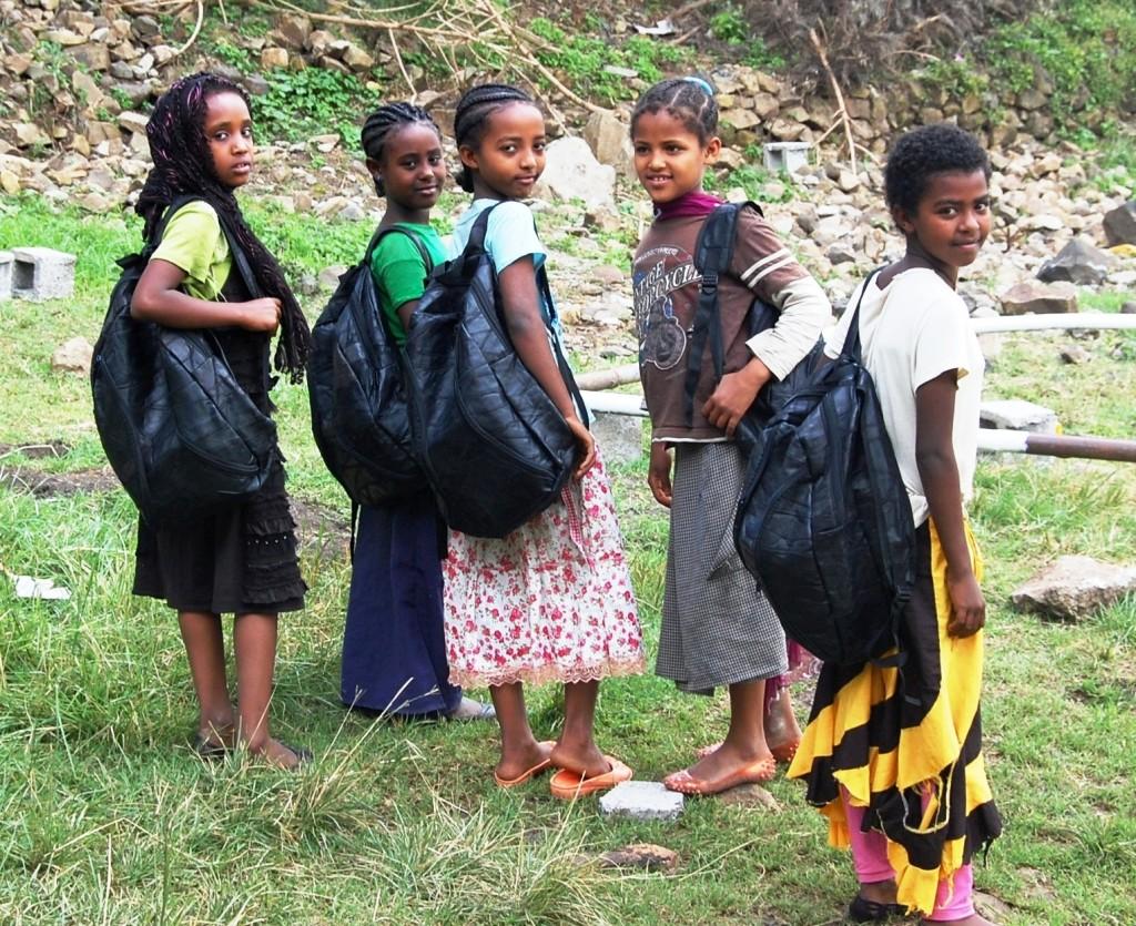 School material provision in Ambassel Woreda